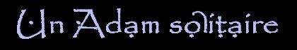 Chroniques d'Enghashel 1.2 - Un Adam solitaire